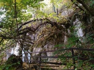 The cave where St. Atanasiy resided
