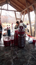 The home-made bio raspberry wine